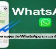 Read-Receipts-In-WhatsApp
